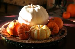 Pumpkins photo by John-Morgan